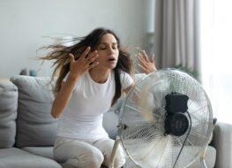 nuevos ventiladores